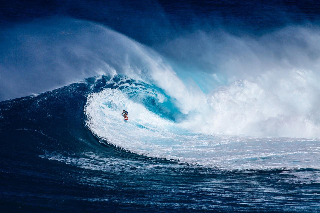 SURFING ŽIVOTA